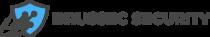 Brussec Security Logo